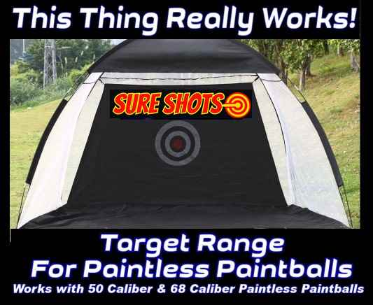 Paintless Paintball Target Shooting